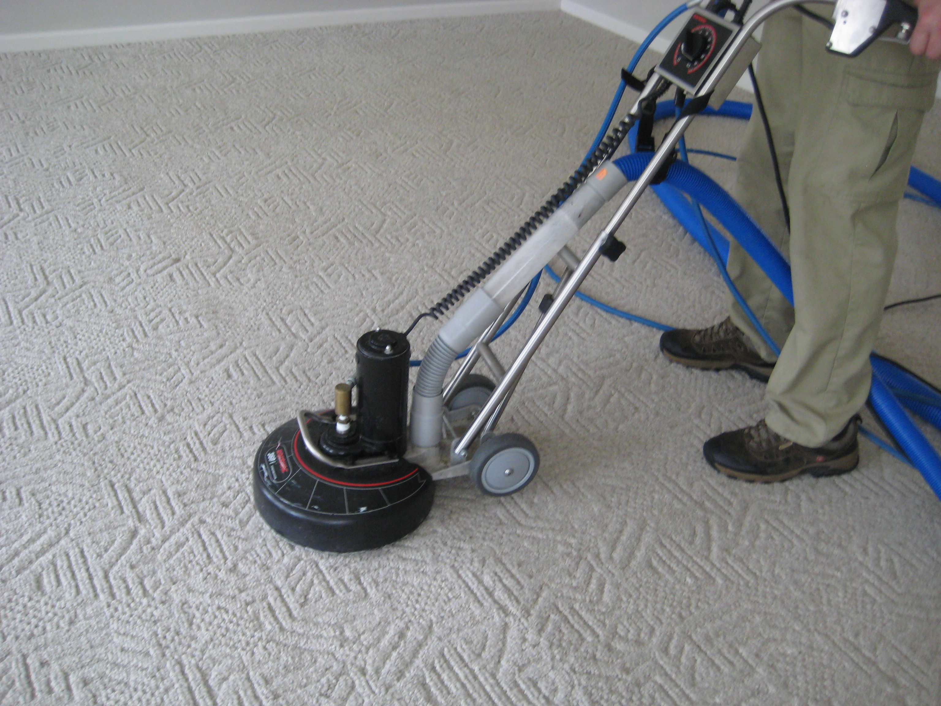 Portfolio Freedom Carpet Cleaning